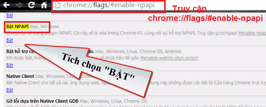 Hướng dẫn khai thuế trên trình duyệt Chrome và Firefox