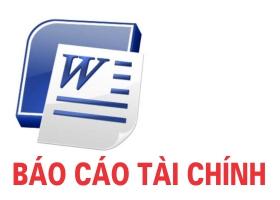 baocaotaichinh